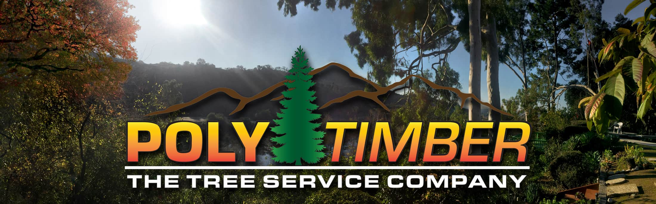 Poly Timber Tree Service