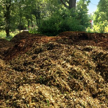 Wood Chipping-Mulching Services